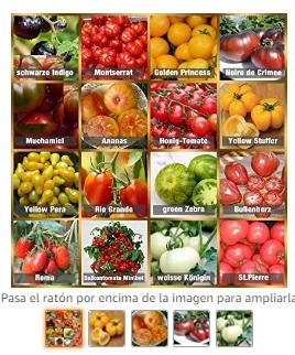 Huerto semillas Tomate